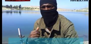 هشدار داعش به مسلمانان در مورد معلمان همجنسگرا در مدارس کشورهای کافر