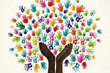 از کانال ویدیویی و فیسبوک شش رنگ دیدن کنید و آنرا به دوستان خود معرفی کنید/ پشتیبانی از فعالیت های شش رنگ