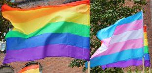 """قانون ازدواج همجنسخواهان چه تاثیری بر """"حقوق ترنسجندرها"""" دارد؟"""