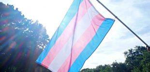 تغییر برای ترنسها، به دست ترنسها