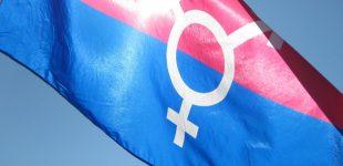 کمیته منشور اجتماعی اروپا عقیمسازی اجباری ترنسها در چک را محکوم کرد