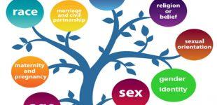 سند پیشنهادی عدالت جنسی و جنسیتی و رفع تبعیض از افراد ترنس