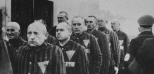 مثلث صورتی و گرامیداشت قربانیان هولوکاست