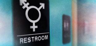 دانشآموزان ترنس بیش از سایرین در خطر آزار جنسی هستند